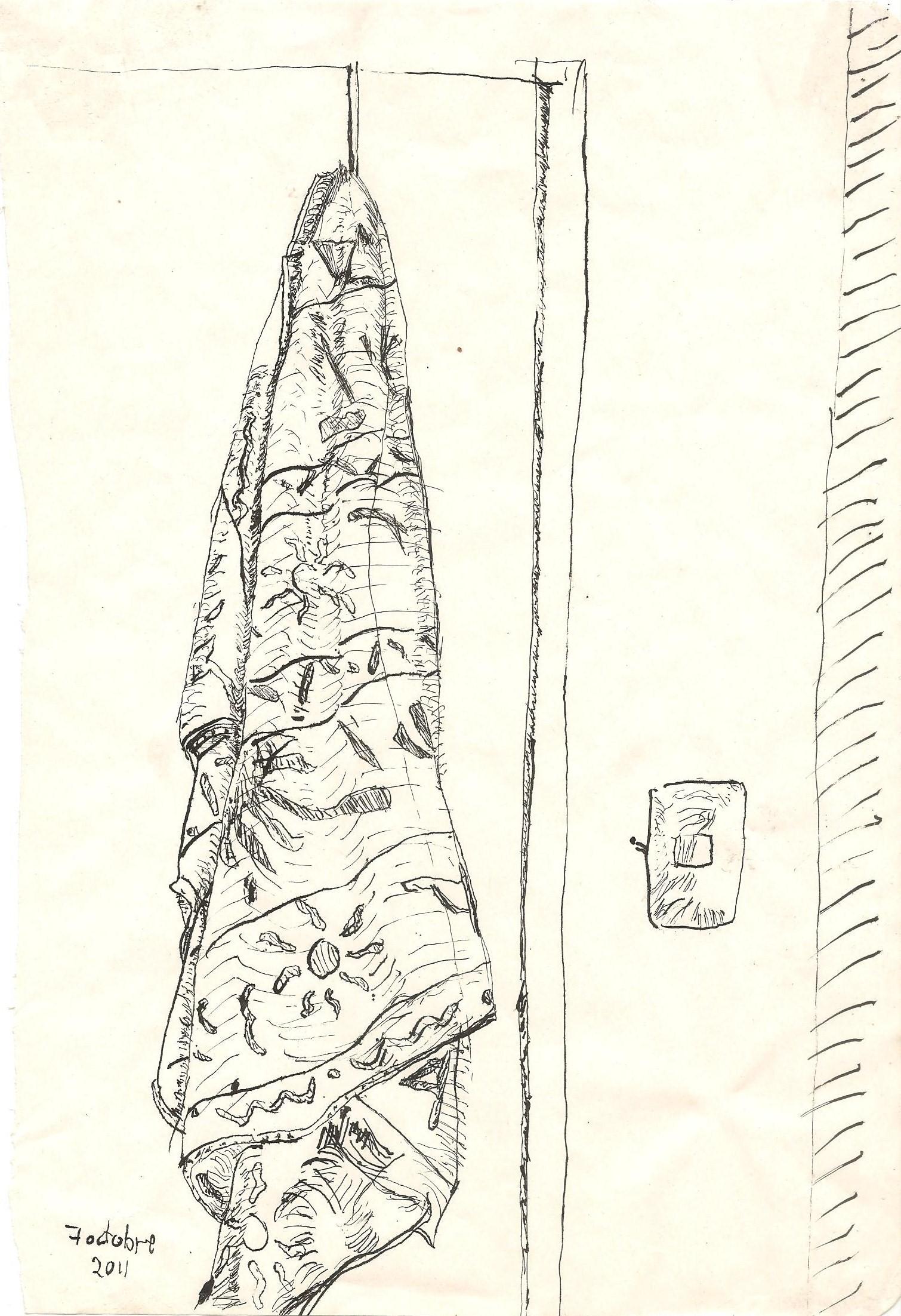 2011.10octubre.07 toalla